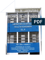 PUBLICACION_PRACTICAS_FluidosII