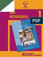 Guía Metodológica 1 Intermedio