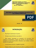 Anatomia do Aparelho Reprodutor Masculino dos Animais Dom+®sticos (ATUAL)