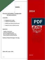 Reporte Aceraxy 2014