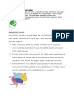 Lobus Otak