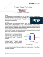 BCT Loop Reactor Technology 2009-02-2