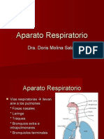 Copia de Aparato Respiratorio