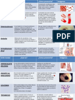 Enfermedades Que Afectan Al Sistema Circulatorio