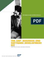 SAP Business One SDK Solution Brief