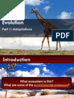 2 m3 evolution - adapt darwin galapagos - de new