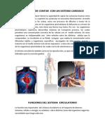 Necesidad de Contar Con Un Sistema Cardiaco Fisiologia