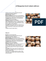 Hungarian Walnut Varieties