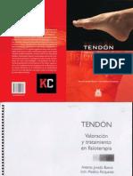 Tendon Valoracion y Tto Fisioterapia