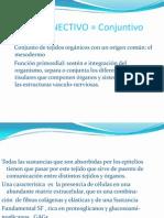 TEJIDO CONECTIVO  1