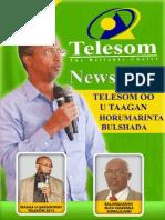 Telesom Newsletter Issue 18 - Dec 2013