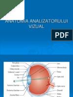 Curs 1 Anatomia Analizatorului Vizual