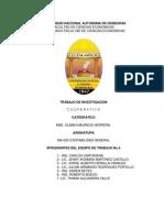 Cooperativa Informe Final.docx