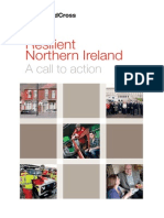 Resilient Northern Ireland a Call to Action