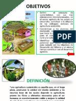 Agricultura Sostenible.pdf
