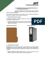 INSTRUCTIVO AL PROPONENTE BANDES.pdf
