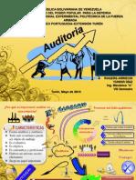 Auditoria Presentacion Mapa Mental Original
