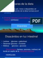 Malabsorcion azucares.pdf