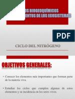 Ciclo Del Nitrógeno-Ecologia