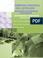 143081409-INFORMES-ICTIOPATOLOGIA