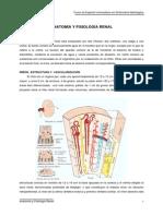 Anatomia y Fisiologia Renal Para Enfermeras