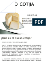 Queso Cotija Final Equipo 6