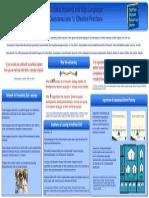 ciecconsiderationsforeffectivepracticesposter-20101201-0002