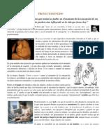 Marc Frechet Proyecto sentido.pdf