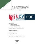 MINERIAS INFORMALES (Autoguardado).docx
