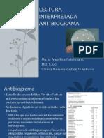 antibiogramaactualizacin-130819132531-phpapp02