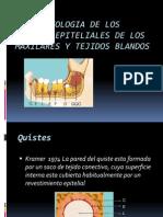 P6_QUISTES EPITEL