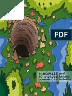 Principales Actividades Económicas en el Pantanal de Bolivia