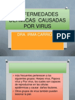 derm virus 2012 2013  (2)