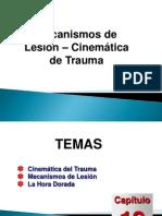Mecanismos Lesion
