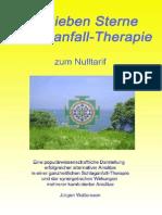 7SterneSchlaganfallTherapie-Zusammenfassung