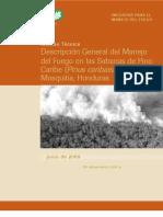 Evaluación de Manejo del Fuego en las Sabanas de Pino Caribe, Honduras