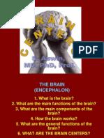 Brain Centers.2012