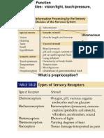 Chap10 Sensory Intro & Special Sensory