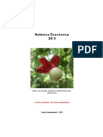 Botanica Economica 2010 - Paulo Schwirkowski