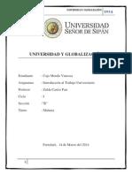 Universidad y Globalización Monografia