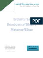 Estructuras Romboencefálicas y Metencefálicas