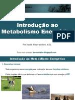 Fisiologia - Introdução Ao Metabolismo Energético