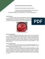 Salmonelosis Enfermedad Transmitida Por Alimentos FINAL[1]