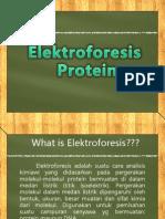 Elektroforesis FIX