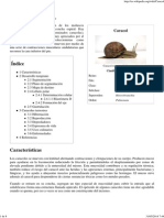 Caracol - Wikipedia, La Enciclopedia Libre