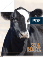 See and Believe Cattle Sale