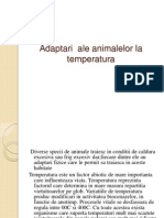 Adaptarea La Temperatura a Animalelor