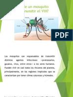 Puede Un Mosquito Transmitir El VIH