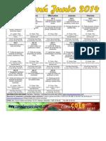 JUNIO 2014 GENERAL PÚBLICO COCINADO.pdf