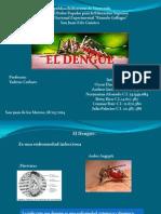 Presentacion Expo Del Dengue. 2